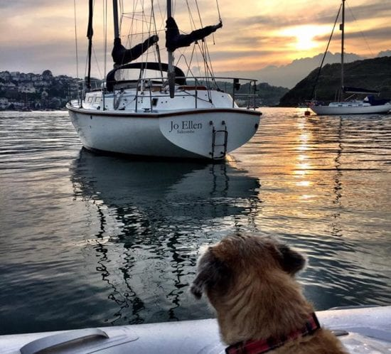 flexible-working-office-design-inspiration-yacht-boat-remote-working-sunset-dog-bertie